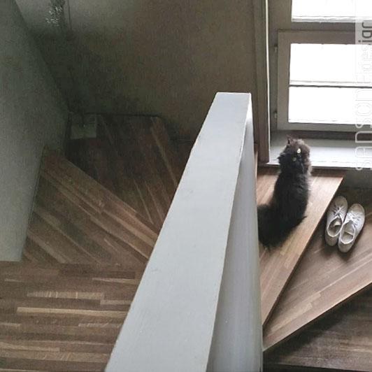 renovation-amenagement-decoration-sansone-design-archi-interieur-maison-campagne-5